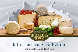 Brand Caseificio Ingardia